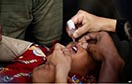 Polio Cases Reach 13  in Afghanistan in 2016