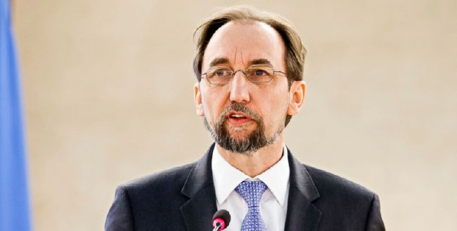 UN Rights Chief Slams  'Pernicious' Security Council Veto Use