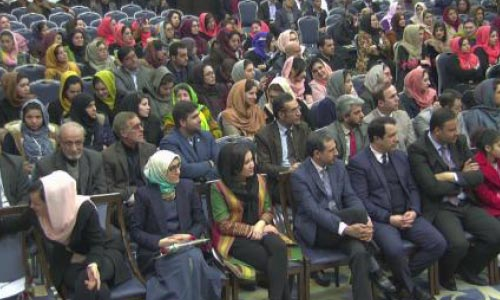 Afghan Women's Role in Civil  Service Increases