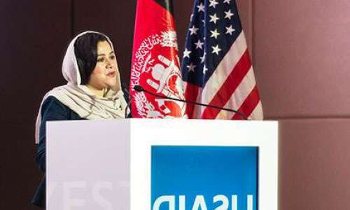 Afghanistan Opens New  Mining Areas to Int'l Investment