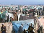 War, Poverty and Afghan Refugees